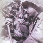 I giorni della linea gotica. Cronologia degli eventi sull'ultimo fronte di guerra in Italia (agosto 1944 - aprile 1945)