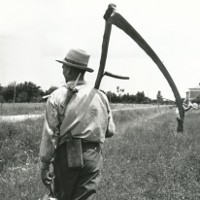 I musei del lavoro contadino in Emilia-Romagna. Atti