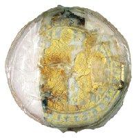 Un tesoro di fede al Castello dei Ronchi. Il vetro dorato paleocristiano e la reliquia di Santa Deodata