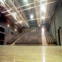 Teatri di Vita