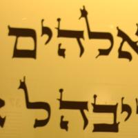 Museo Ebraico di Bologna| MEB
