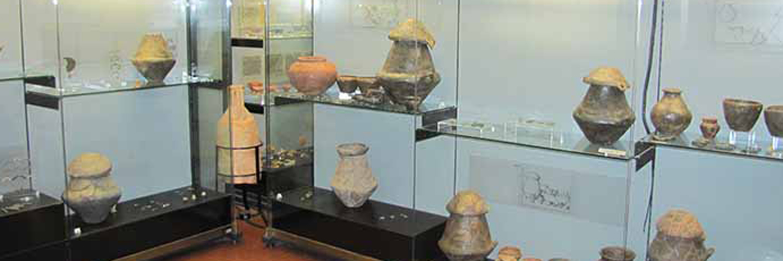 Budrio - Museo Civico Archeologico e Paleoambientale Elsa Silvestri