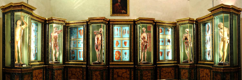 Bologna - Museo di Palazzo Poggi
