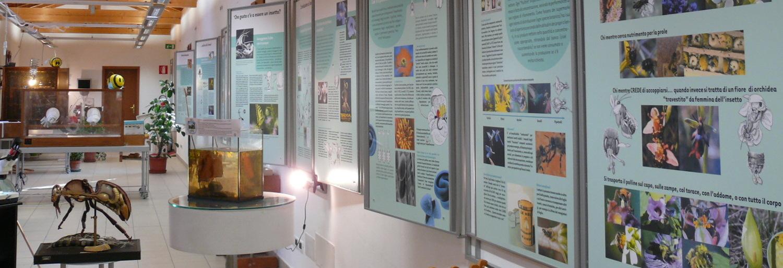 San Giovanni in Persiceto - Museo del Cielo e della Terra