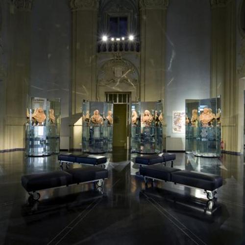 Museo della Storia di Bologna | Palazzo Pepoli | Genus Bononiae