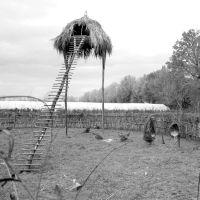 Villa Smeraldi / Arte contemporanea