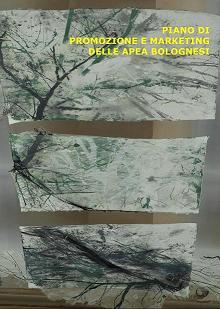 Un piano di green marketing per le Apea bolognesi