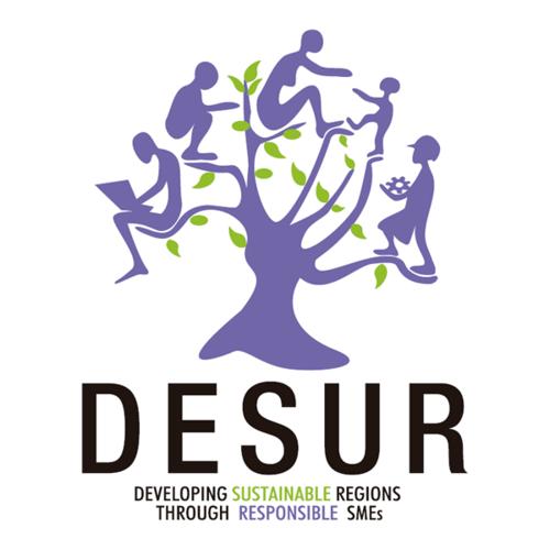 Responsabilità sociale nelle PMI: gli atti del seminario del progetto DESUR