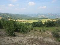 Terreni Podere Le Croci  comuni di Monzuno e San Benedetto Val di Sambro