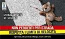 L'orsacchiotto di Federico - Manifesto della campagna