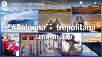 #BolognaMetropolitana - Le più belle immagini di gennaio 2019
