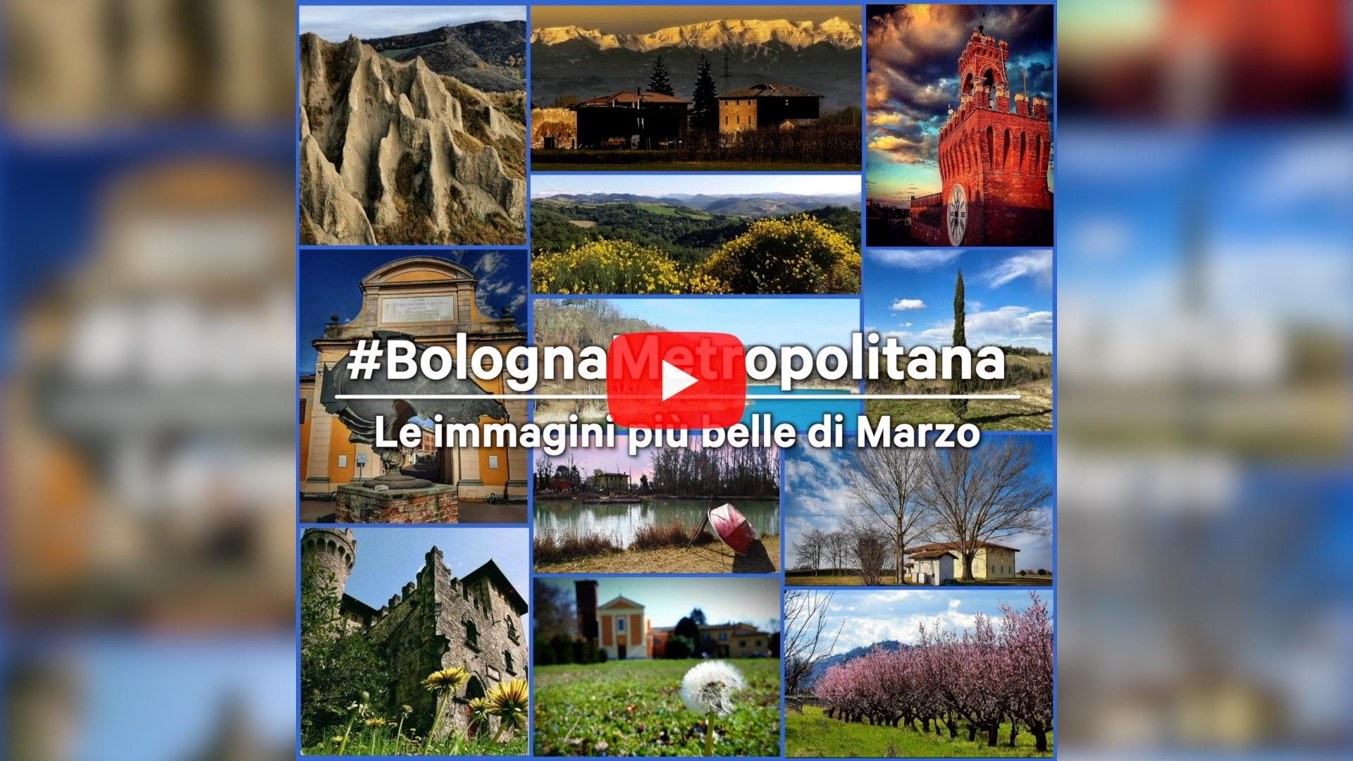 #BolognaMetropolitana - Le immagini più belle di marzo 2021