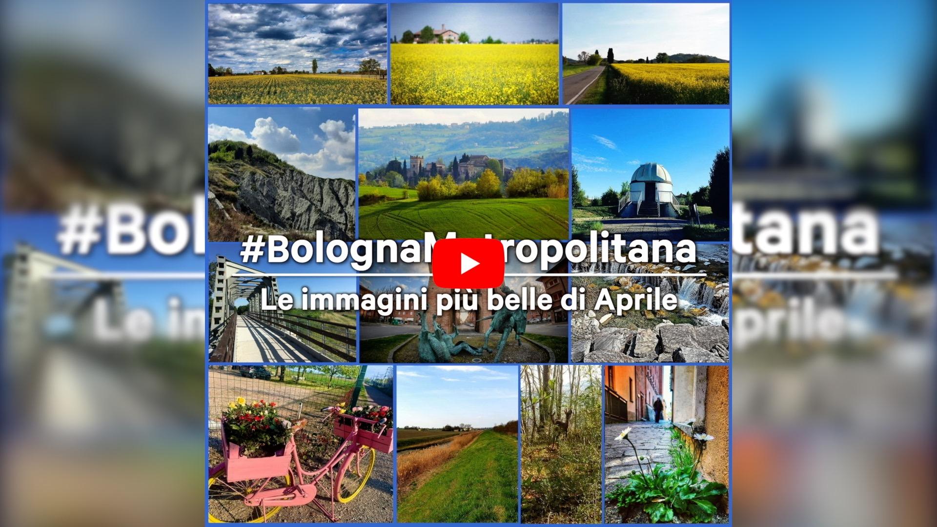 #BolognaMetropolitana - Le immagini più belle di aprile 2021