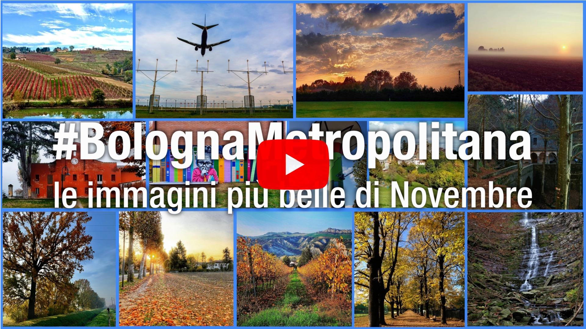 #BolognaMetropolitana - Le immagini più belle di novembre 2020