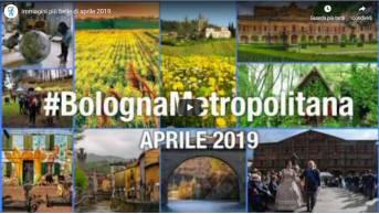 #BolognaMetropolitana - Le immagini più belle di aprile 2019