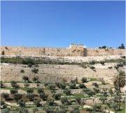 Gerusalemme, città dell'incontro