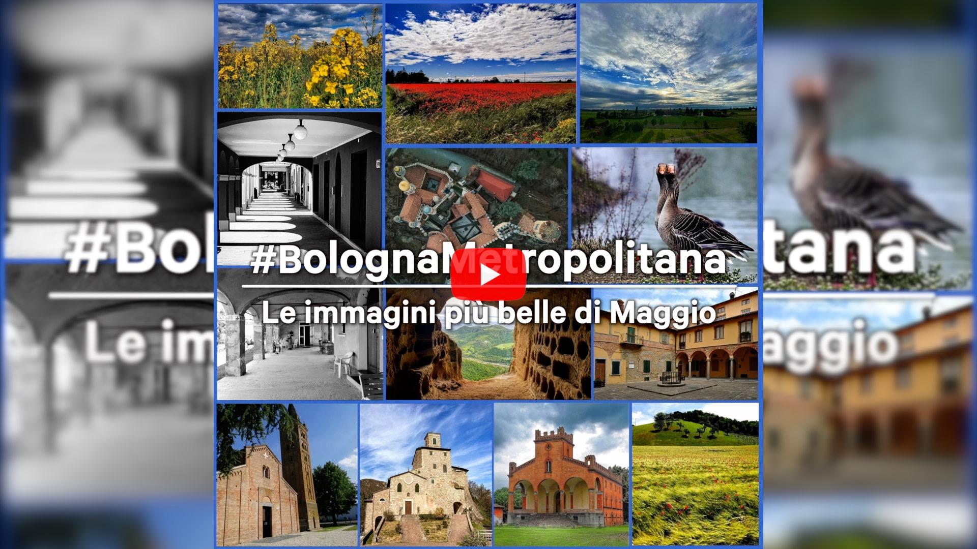 #BolognaMetropolitana - Le immagini più belle di maggio 2021
