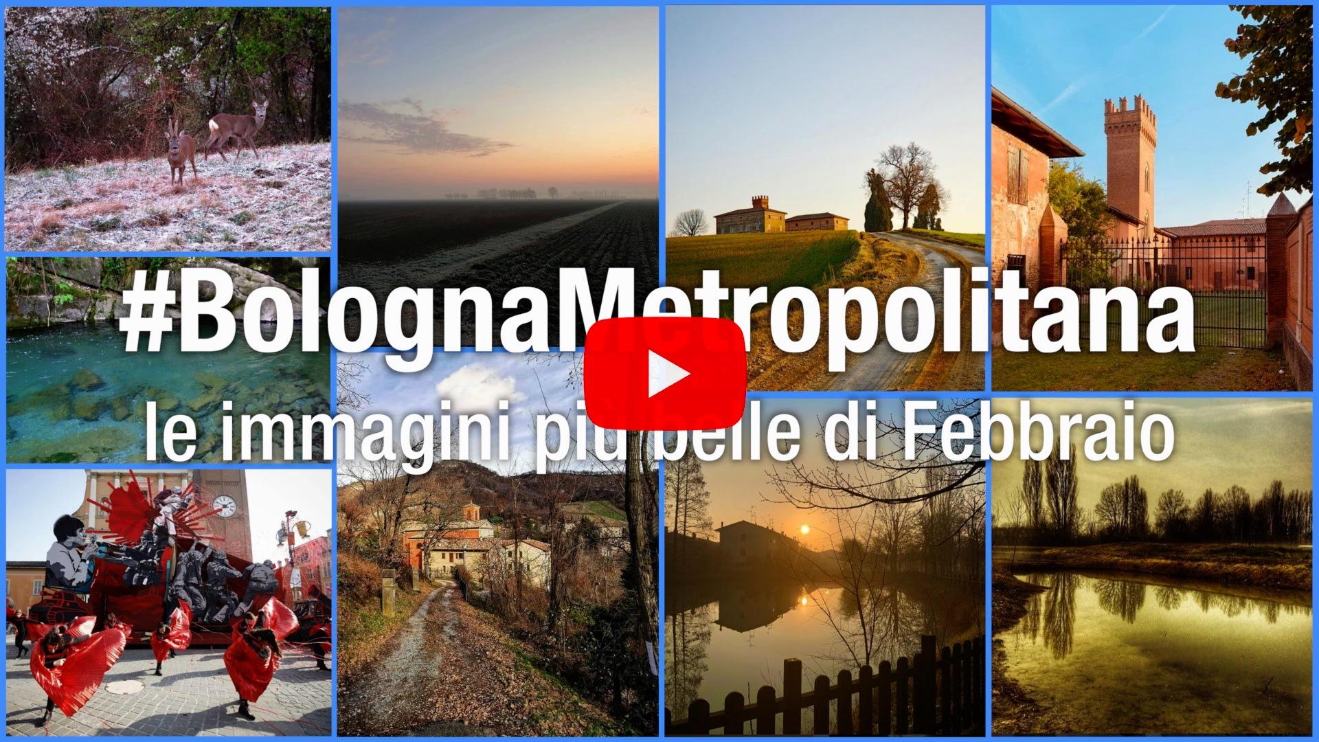 #BolognaMetropolitana - Le immagini più belle di febbraio 2020