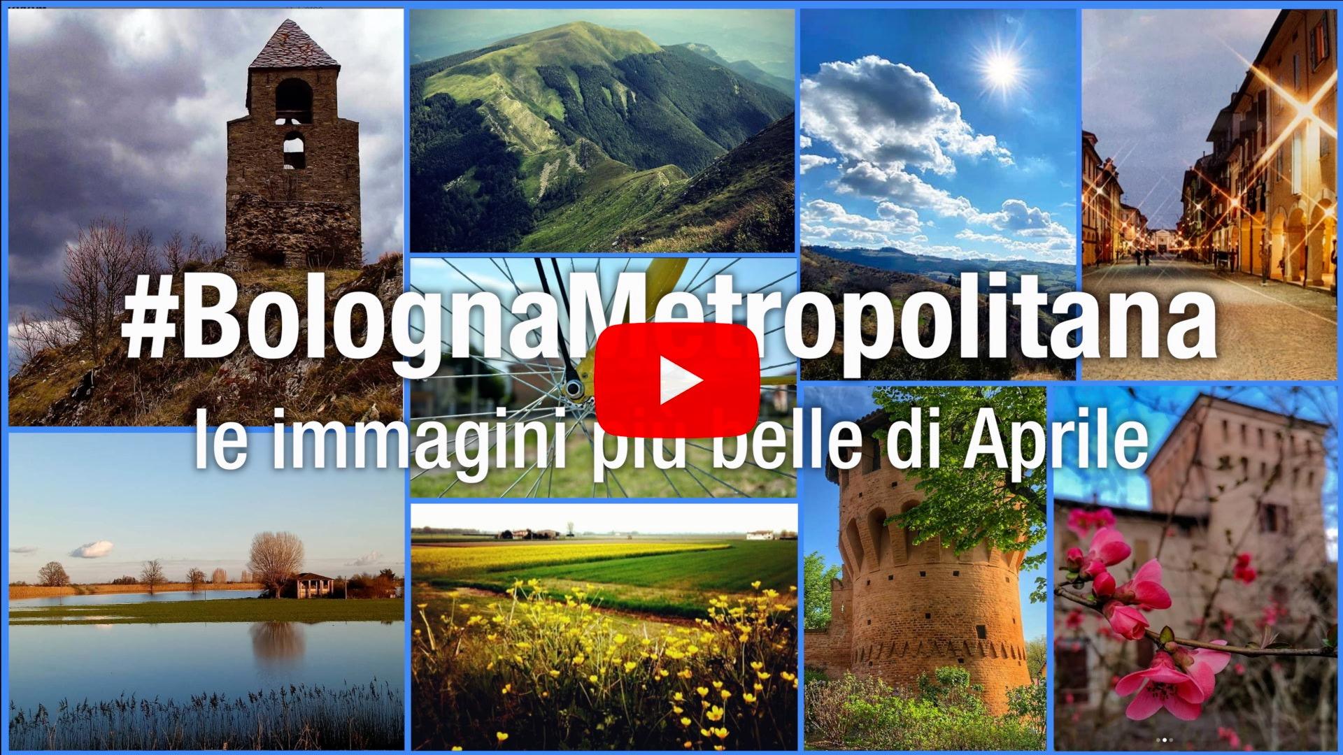 #BolognaMetropolitana - Le immagini più belle di aprile 2020