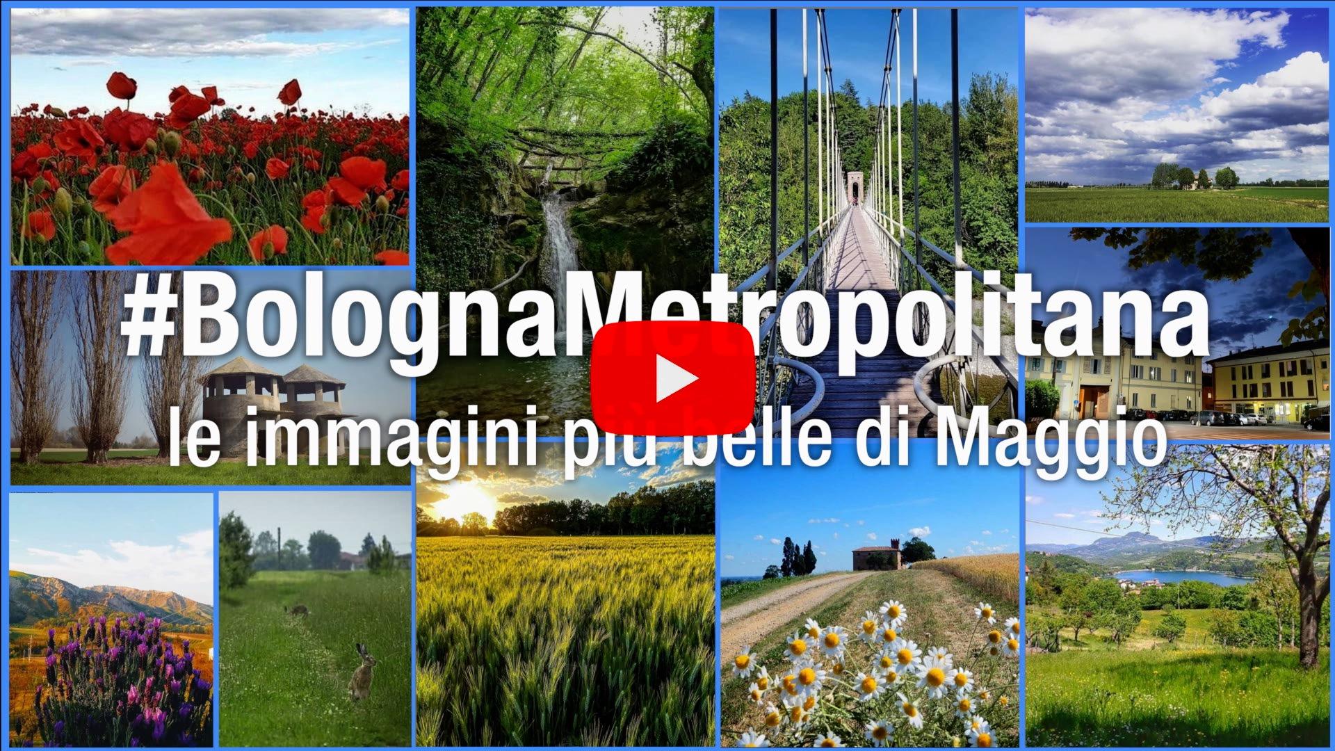#BolognaMetropolitana - Le immagini più belle di maggio 2020