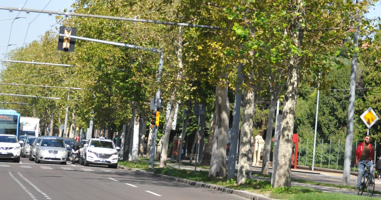BolognaMetropolitana in numeri - Veicoli circolanti nell'area metropolitana
