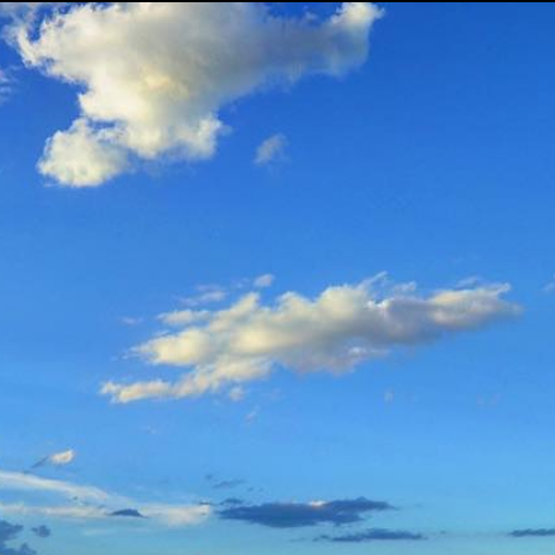Inquinamento, un questionario on line per rilevare la percezione dei cittadini sulla qualità dell'aria a Bologna