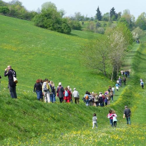 """Escursioni e passeggiate per """"Le colline fuori della porta"""""""
