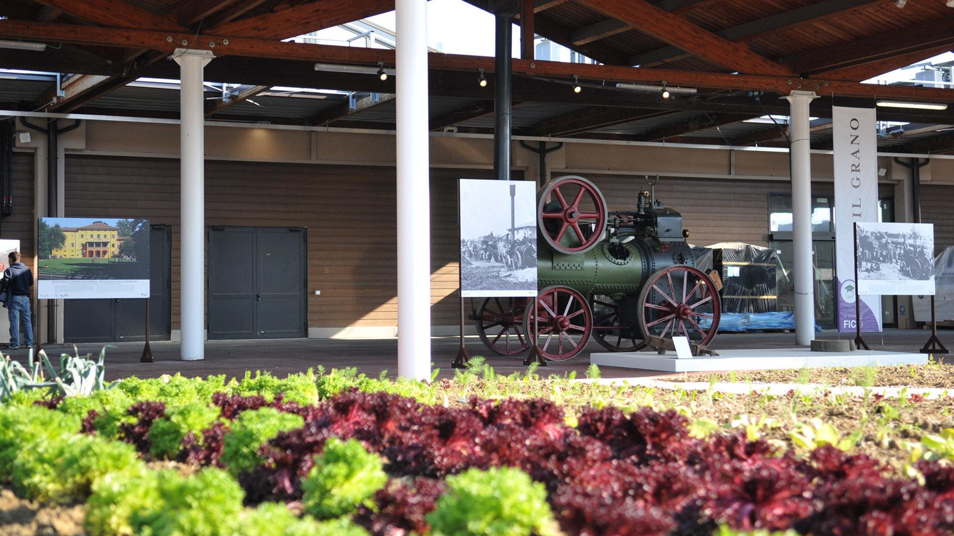 Il Museo della Civiltà Contadina della Città metropolitana arriva a Fico, parte la collaborazione con il Parco dell'agroalimentare
