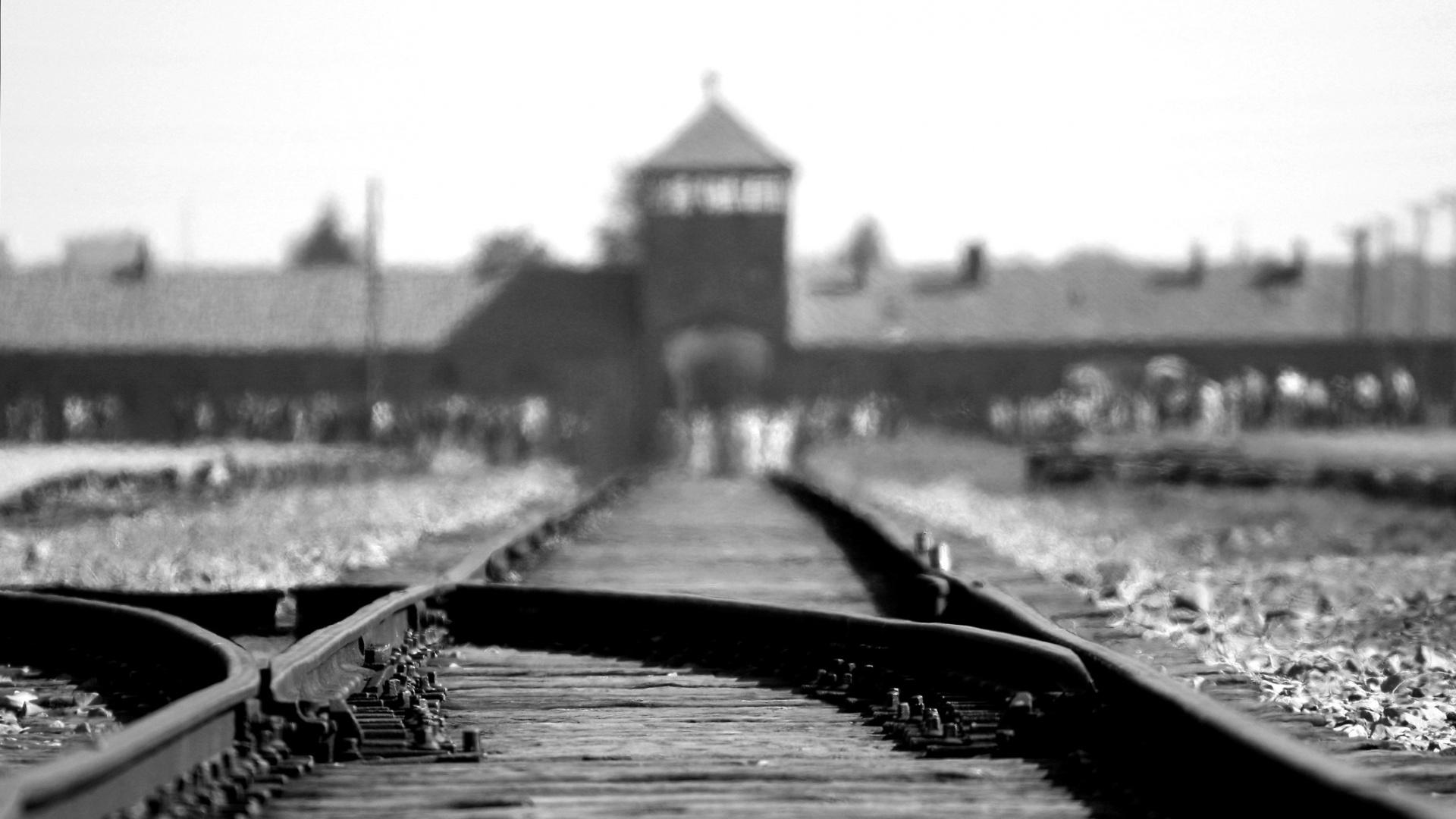 """27 gennaio """"Giorno della Memoria"""": gli appuntamenti online nella città metropolitana per non dimenticare la Shoah"""