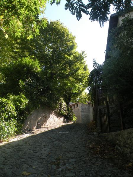 Il cammino degli Sterpi - Montovolo