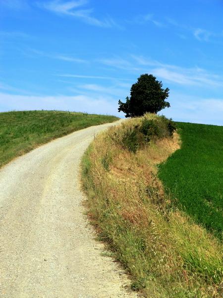 Portale strada di campagna for Disegni di cabina di campagna