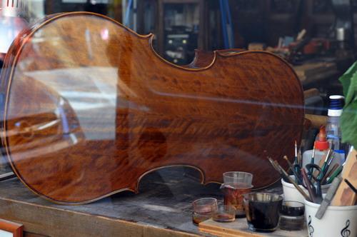 01/09/2011 - Vetrina in via Belle Arti a Bologna - Foto di Salvatore Morelli