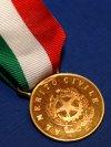 Consegna della Medaglia d'oro alla Provincia