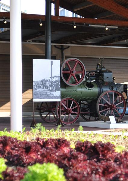 Il Museo della Civiltà Contadina della Città metropolitana arriva a Fico