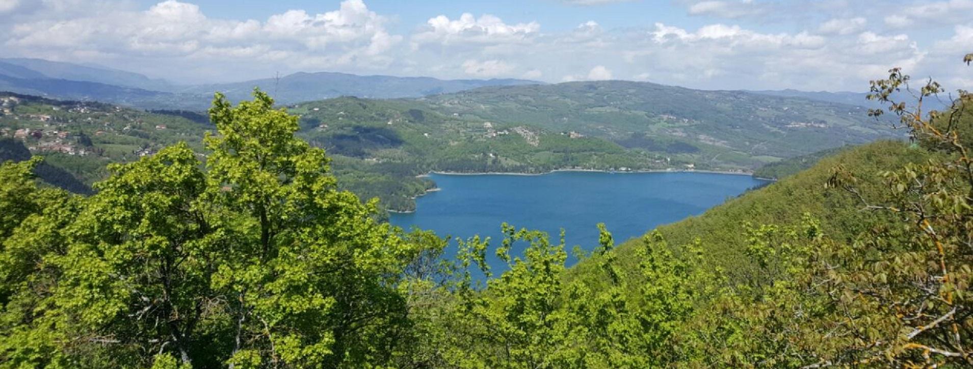 Immagine lago Suviana