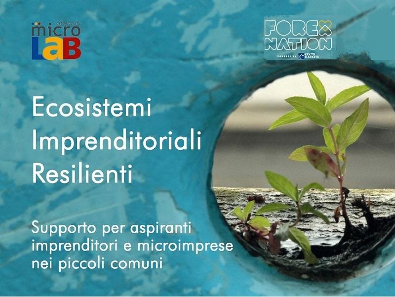 Ecosistemi imprenditoriali resilienti: un ciclo di formazione e mentoring gratuito