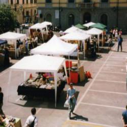 Commercio su aree pubbliche con posteggio
