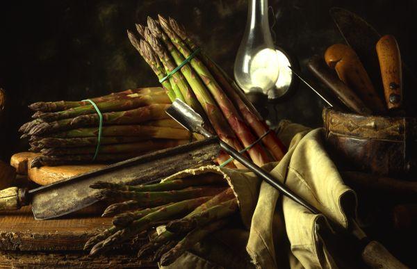 Asparago verde di Altedo IGP - foto di Paolo Barone
