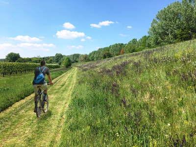 Scopri la pianura bolognese