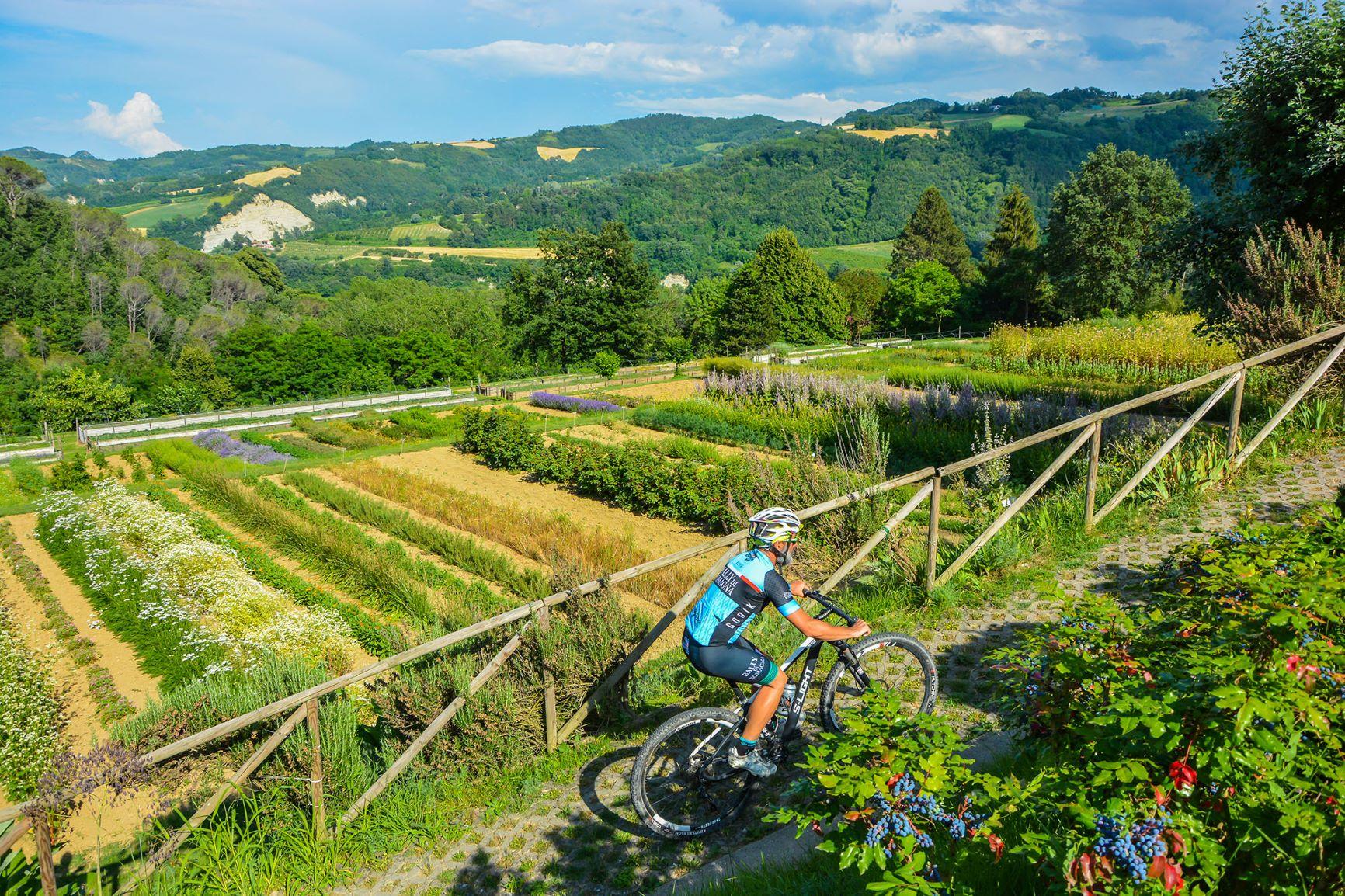 Scopriin bici il cuore dell'Emilia-Romagna